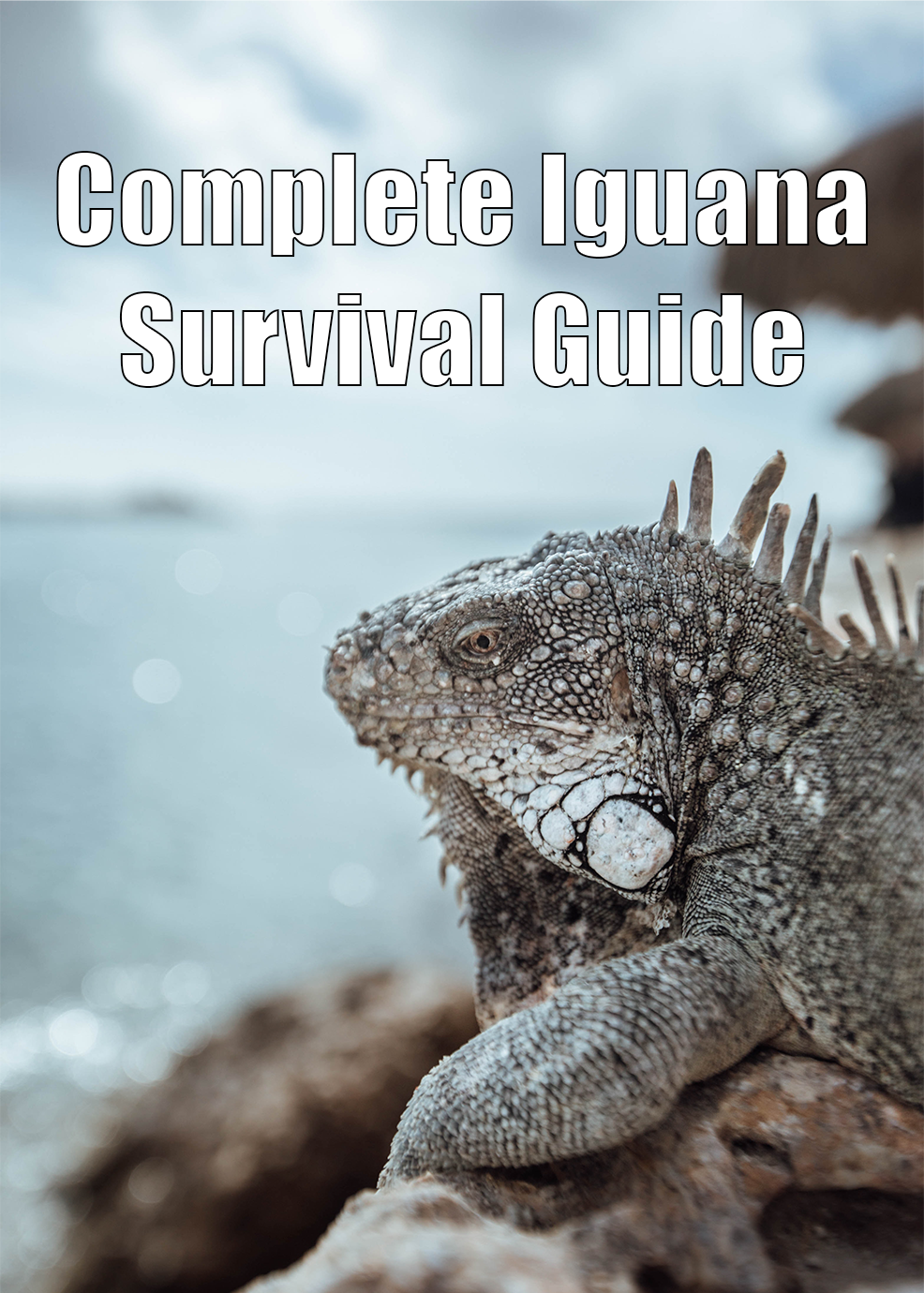 Complete Iguana Survival Guide