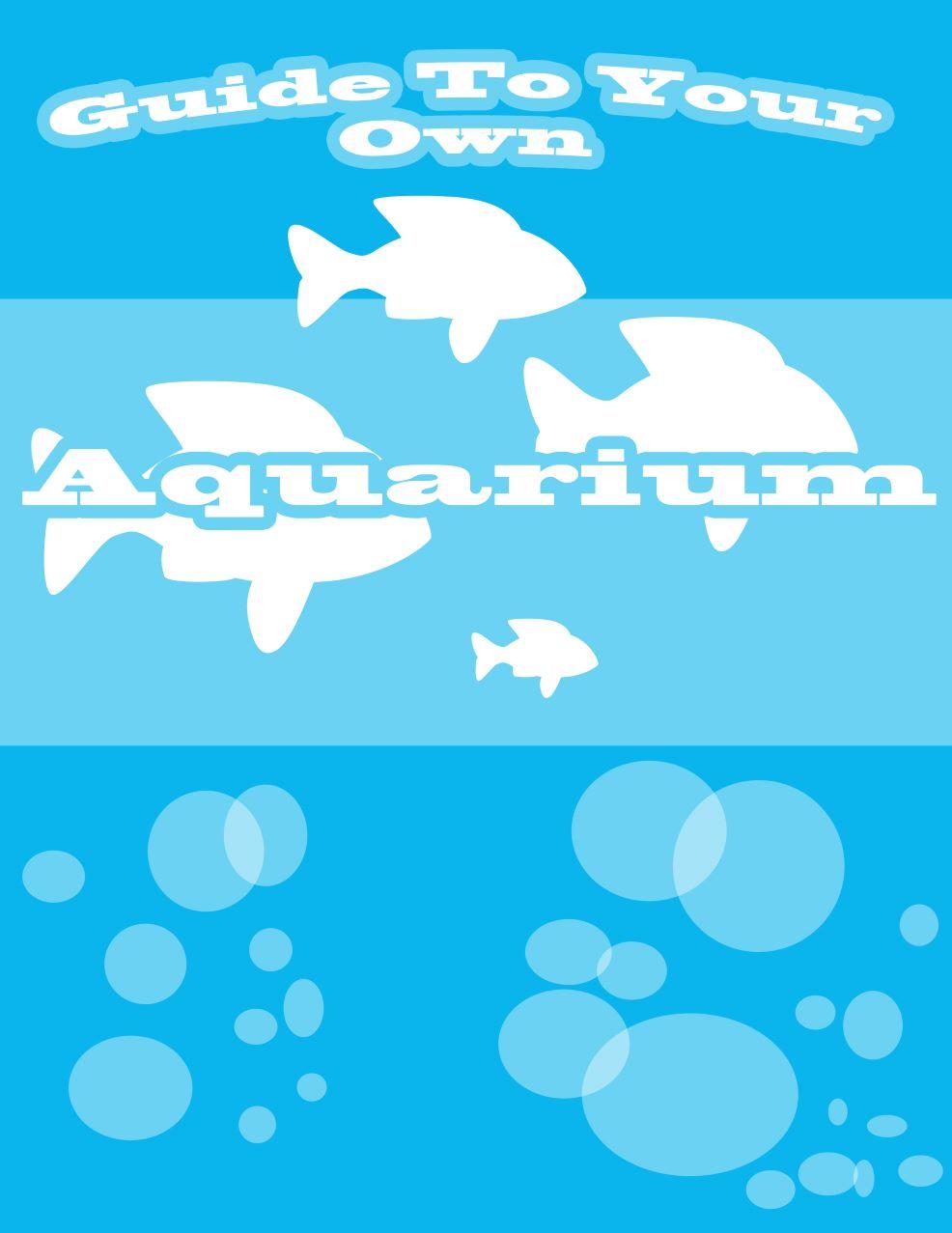 Guide To Your Own Aquarium